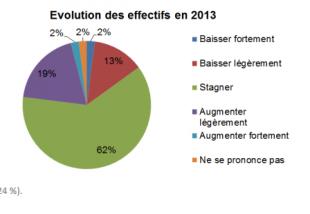 evolution_effectif_2013