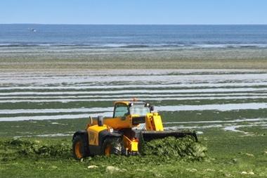 Pourquoi et comment les collectivités doivent lutter contre les nitrates ?