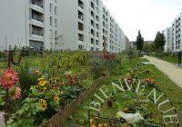 Les jardins ouvriers du Zéphyr, à la Rose des vents, Aulnay-sous-Bois