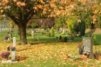 jardin_souvenir
