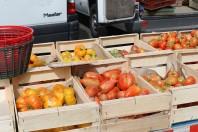 marche-tomate-bio