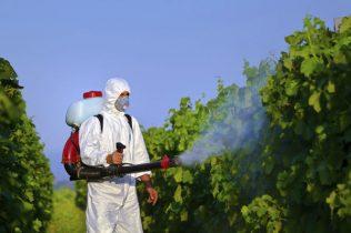 pesticides - humanite-biodiversite.fr