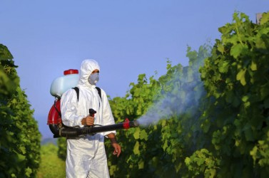 pesticides - humanite-biodiversite.fr