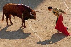 peur-angoisse-entretien-corrida-une