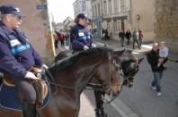 policeCheval