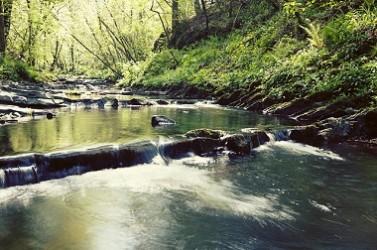 rivière open data