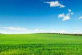 rural-vide-Une juridique