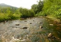 Contre les inondations, la renaturation des cours d'eau prouve son efficacité