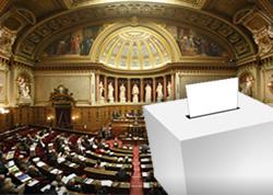 Les institutions politiques 2 : les pouvoirs exécutif et législatif