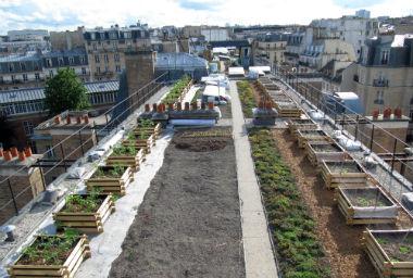 Construire sur les toits : les nouveaux défis de la surélévation